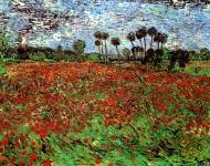 Field With Poppies1