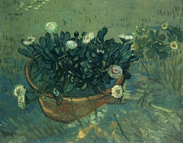 Still Life Bowl With Daisies