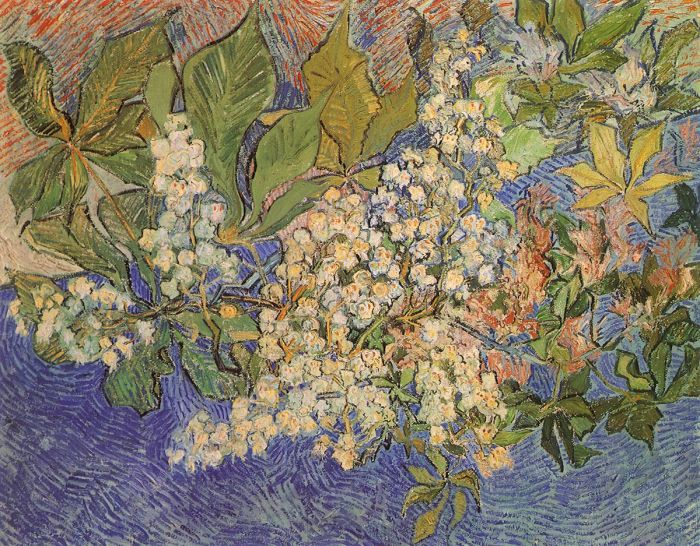 Vincent Van Gogh Collection 65