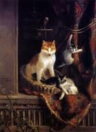 Cat And Playing Kittens