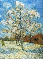 Peach Trees In Blossom 1