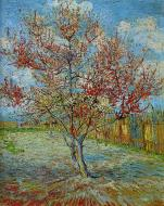 Peach Trees In Blossom 2