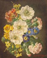 Anemones, Carnations and Polyanthus