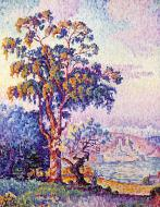 Antibes, the Eucalyptus, 1913