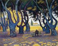PlaneTrees, Place des Lices, Saint-Tropez, 1893