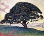 The Bonaventure Pine, Saint-Tropez, 1893