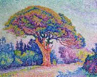 The Pine Tree at St. Tropez, 1909